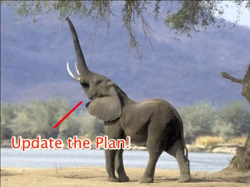 Update the Plan Elephant